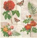 5枚組ペーパーナプキン*花と蝶【C】