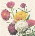 5枚組ペーパーナプキン*Strawflowers