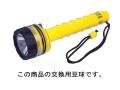 AQUALUNG(アクアラング) 東芝ライト(K-138)用豆球