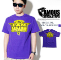 FAMOUS フェイマス Tシャツ B系ファッション メンズ ストリート系 SK8 fmt069 b系 ストリート系 ファッション 服 通販 激安 セール SALE