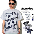 STREET WISE ストリートワイズ Tシャツ swt020