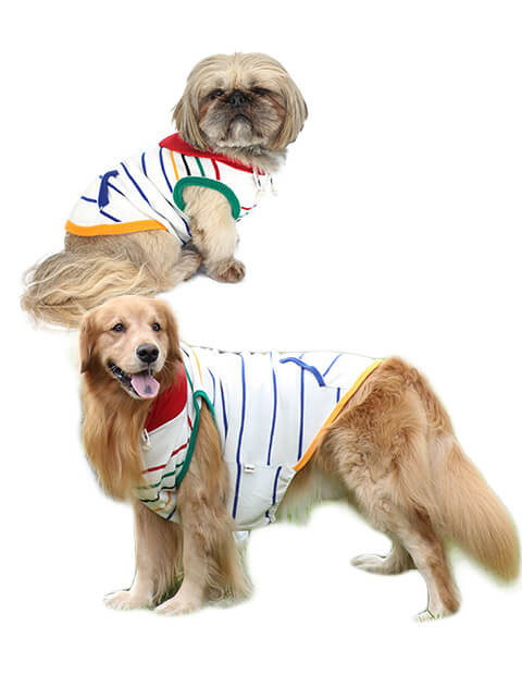 【DOG WEAR】5カラーボーダーニット