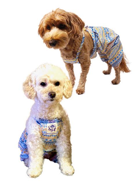 【DOG WEAR】ネイティブパンツ
