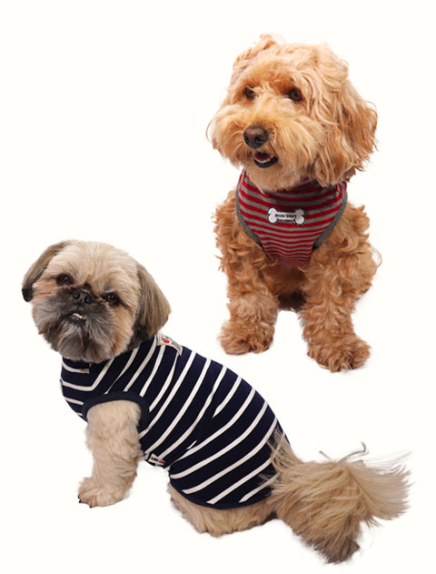 【DOG WEAR】MIPボーダー ノースリーブタートル
