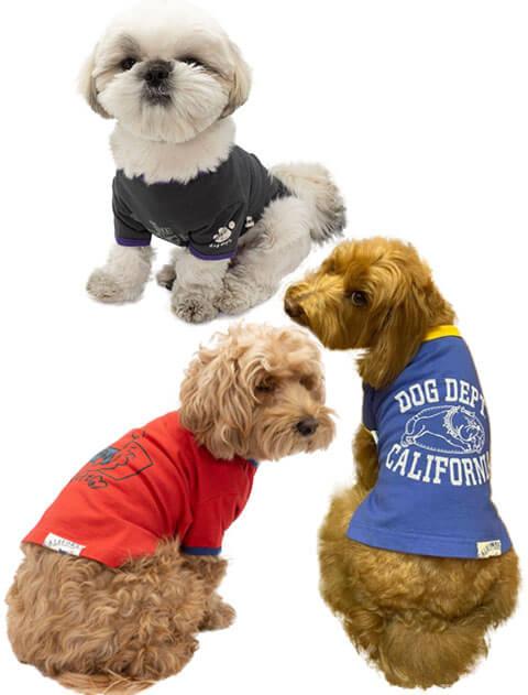 【DOG WEAR】イラストリンガーTシャツ