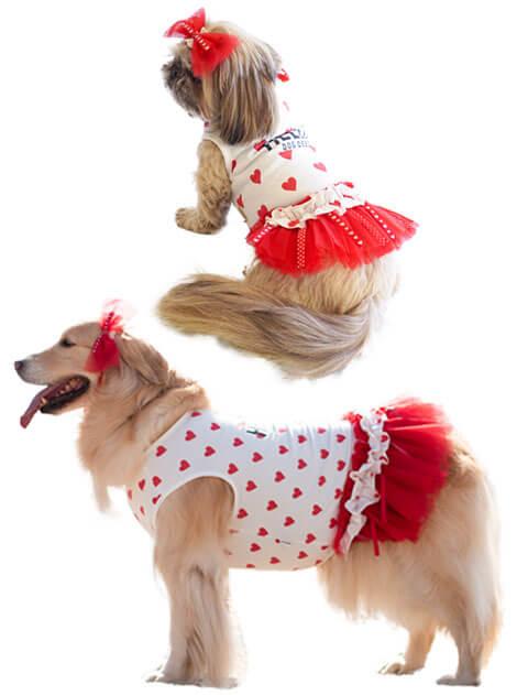 【DOG WEAR】ハートチュールワンピ