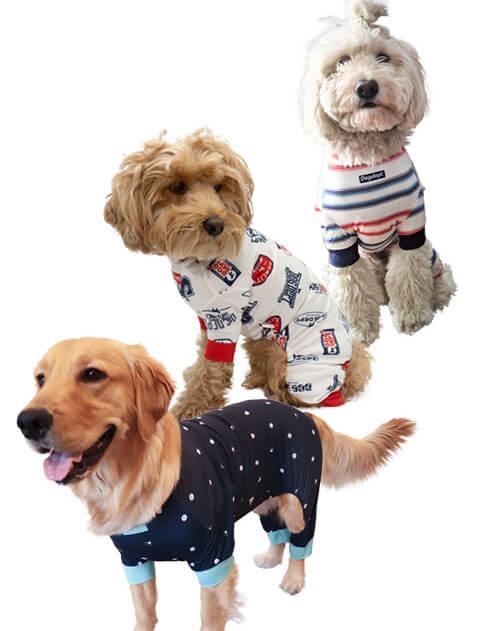 【DOG WEAR】ラッシュガード  ロンパース