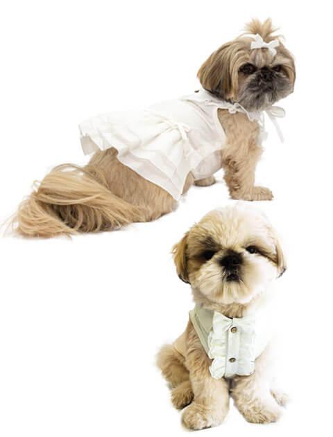 【DOG WEAR】刺繍サマードレス&シャツ