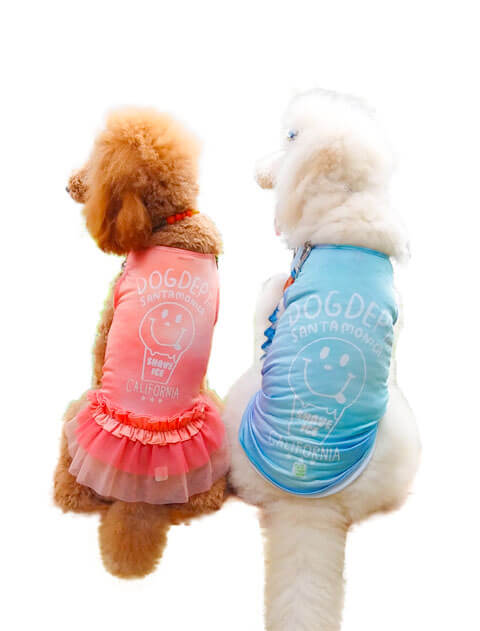 【DOG WEAR】シェーブアイスメッシュペア