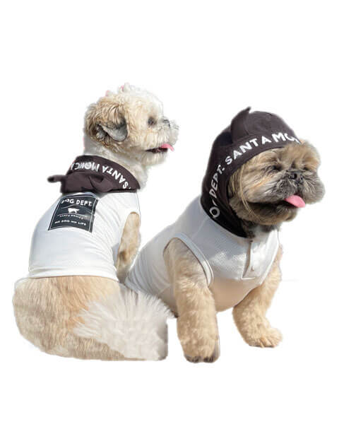 【DOG WEAR】メッシュツノ付きパーカー
