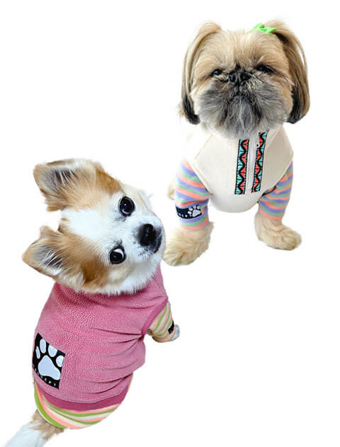 【DOG WEAR】ストレッチフリース  レイヤースタンドジップ