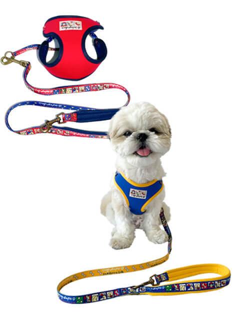 【DOG GOODS】イラストリード&ソフトハーネスセット