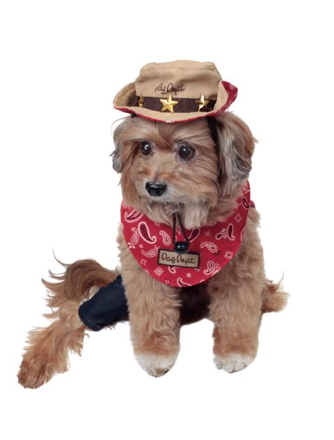《期間限定アウトレット》【DOG GOODS】ペイズリーテンガロンハット