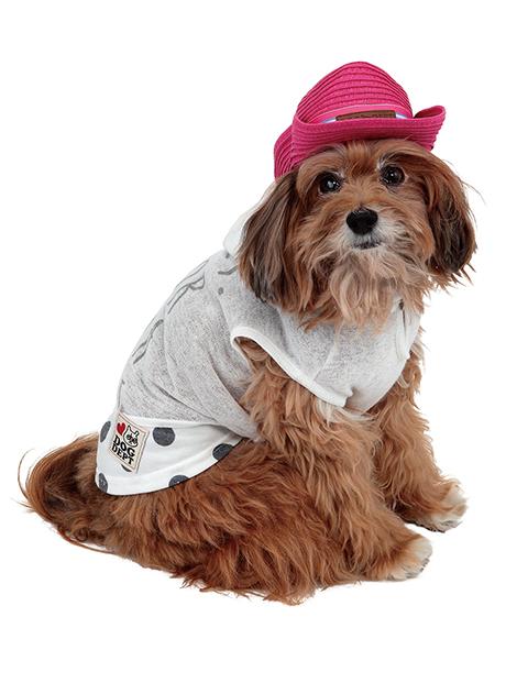 【DOG WEAR】フェイクレイヤーパーカー
