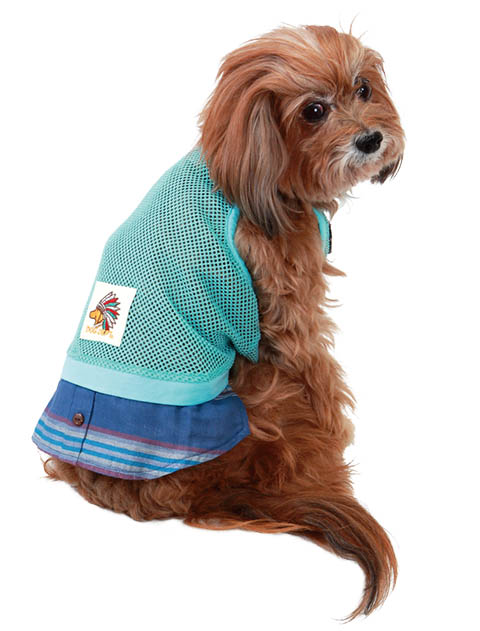 【DOG WEAR】メッシュ×シャツ