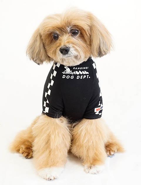 【DOG WEAR】アウトラストおすわりカート
