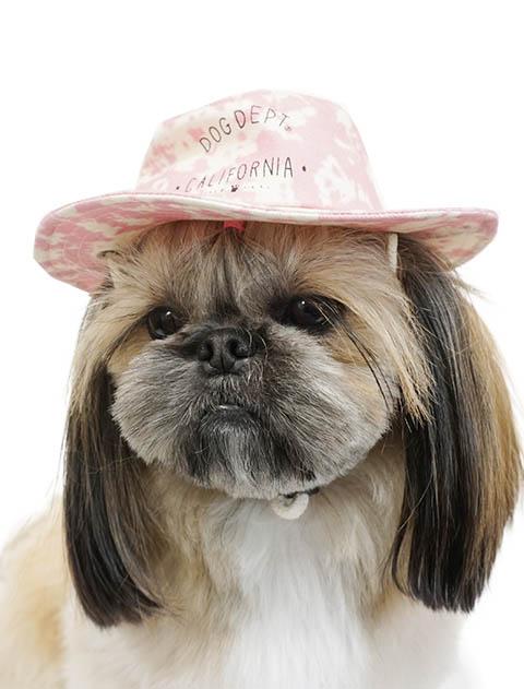 【DOG GOODS】タイダイ風ハット