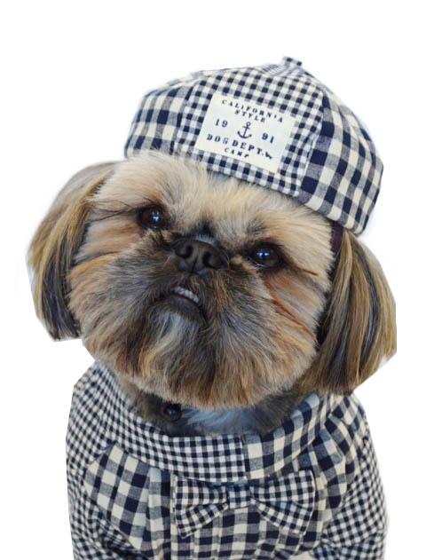 【DOG GOODS】ギンガムベレー