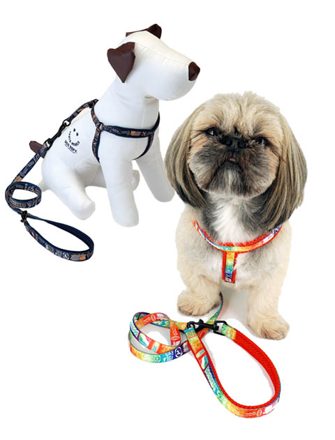 【DOG GOODS】総柄ロゴ リード&ライトハーネスセット