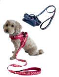 【DOG GOODS】クラシックロゴスポーツリード&ハーネスセット