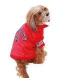 【DOG WEAR】メッシュポロ