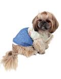 【DOG WEAR】ボーダーリボンワンピース