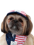 《MORE SALE対象》【DOG GOODS】アメリカドッグキャップ