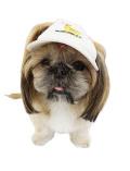 【DOG GOODS】カリフォルニアドッグキャップ