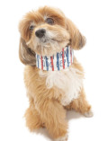 【まとめ割引対象】【DOG GOODS】マリンボーダー クールバンダナ