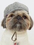 【DOG GOODS】ドッグツイードキャスケット