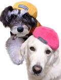 【DOG GOODS】シャギーベレー
