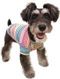 【WEB&一部店舗限定】【DOG WEAR】レインボーボーダーTシャツ