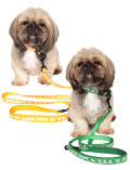 【DOG GOODS】反射ロゴ リード&カラーセット