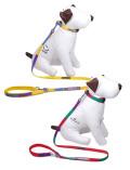 《期間限定》【DOG GOODS】カラフルボーダー リード&カラーセット