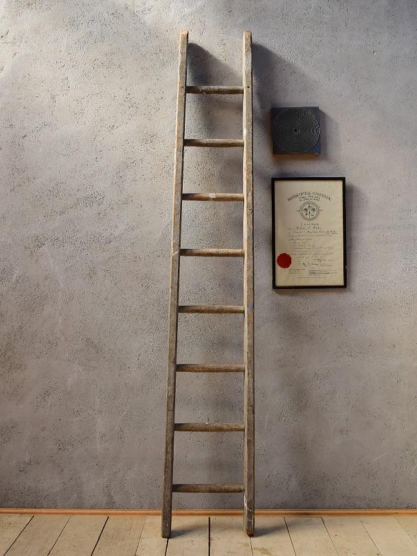 イギリス アンティーク 木製ラダー 梯子 ディスプレイ 6569