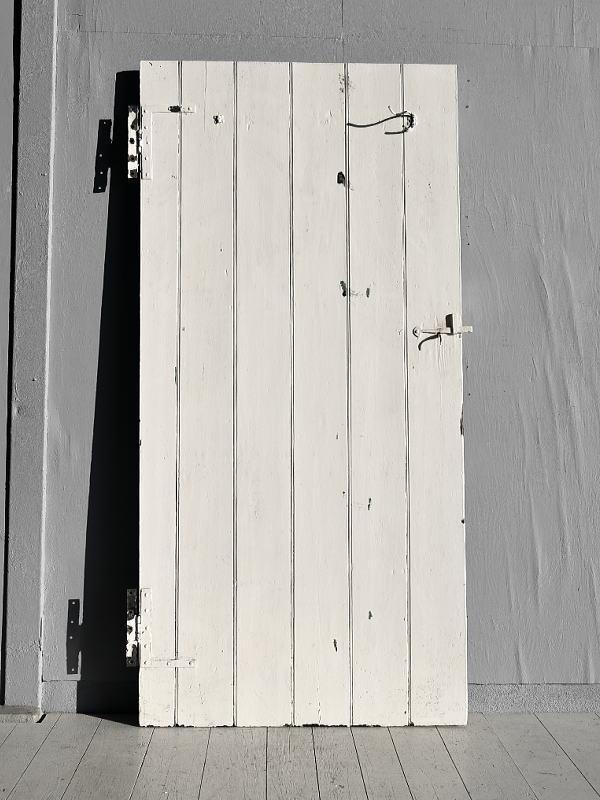 イギリス アンティーク ドア 扉 ディスプレイ 建具 7791