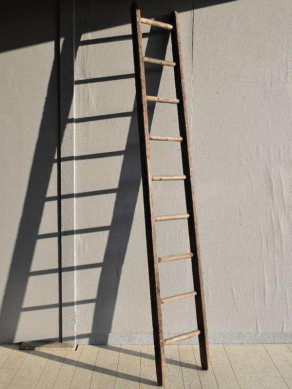 イギリス アンティーク 木製ラダー 梯子 ディスプレイ 7922
