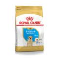 (お一人様5点まで)ロイヤルカナン ブリードヘルスニュートリション ラブラドールレトリバー子犬用 3kg