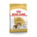 (お一人様5点まで)ロイヤルカナン ブリードヘルスニュートリション キャバリア キング チャールズ成犬・高齢犬用 1.5kg