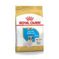 (お取り寄せ)ロイヤルカナン ブリードヘルスニュートリション フレンチブルドッグ子犬用 1kg