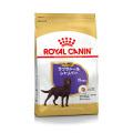 (お一人様5点まで)ロイヤルカナン ブリードヘルスニュートリション ラブラドールレトリバー ステアライズド成犬・高齢犬用 3kg