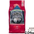 【在庫限りで輸入元販売終了】ブルー(BLUE) ウィルダネス 成犬用サーモン 4.5lbs/2.04kg