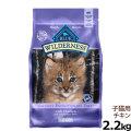 ブルー(BLUE) ウィルダネス 子猫用チキン2.2kg