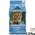 【在庫限りで輸入元販売終了】ブルー(BLUE) ウィルダネス子犬用チキン 4.5lbs/2.04kg