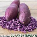 ドットわんの逸品 フリーズドライ薩摩紫イモ8g
