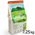 gather ギャザー エンドレスバレー 7.25kg(お取り寄せ)