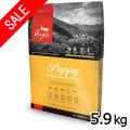 特価品(賞味期限2018年9月26日)アウトレット オリジン パピー 5.9kg(お取り寄せ商品)