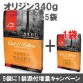 オリジン キャット&キトゥン 340g×6袋【小袋5個+1増量キャンペーン 8/31まで】