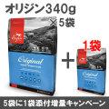 オリジン オリジナル(旧オリジン アダルト) 340g×6袋【小袋5個+1増量キャンペーン 8/31まで】