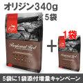 オリジン レジオナルレッド 340g×6袋【小袋5個+1増量キャンペーン 8/31まで】